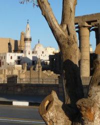 Luxor 2009 013