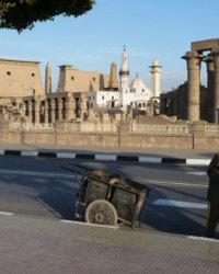 Luxor 2009 198