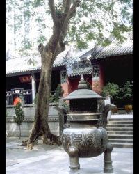 MacaoTjing